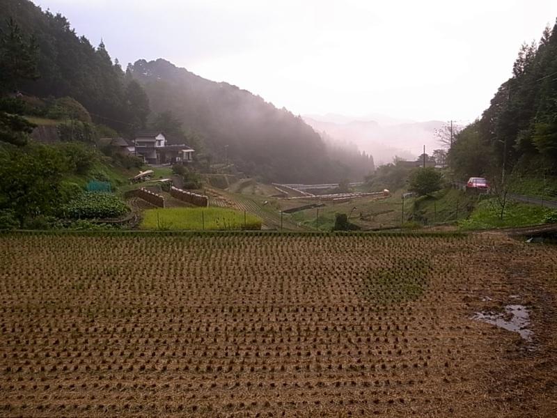 稲刈りが終わった谷。