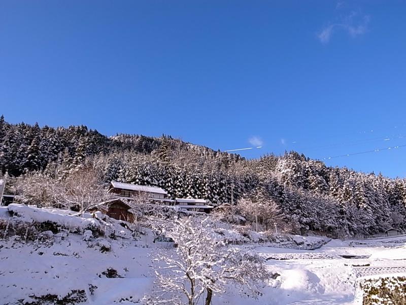 積雪後の快晴。