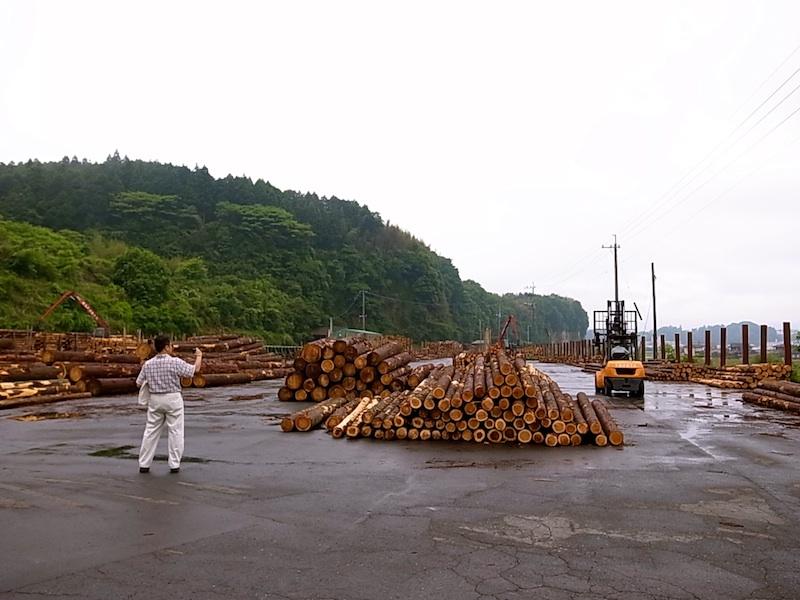 日田木材市場にて。
