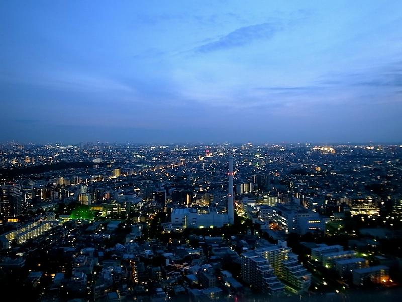 広い関東平野。