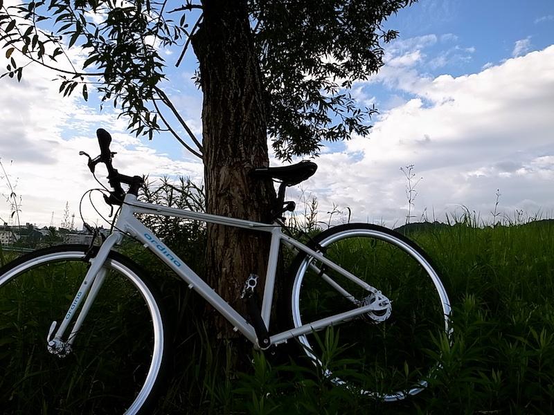 朝の自転車散歩。